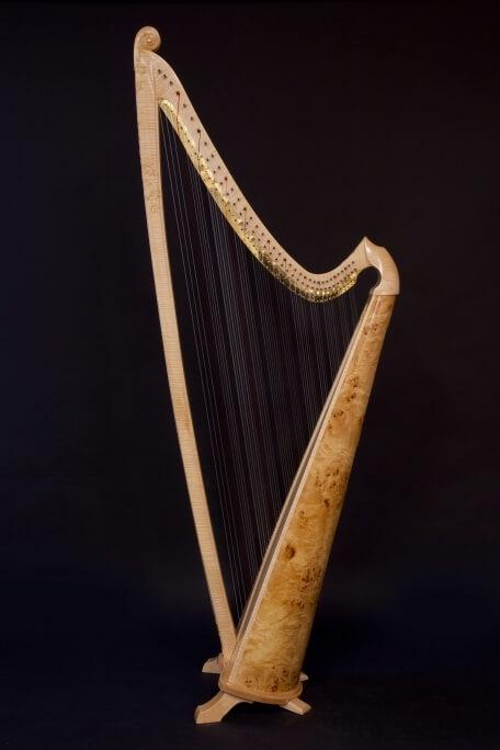 Isabelle de Spoelberch Harpe Triple Galloise