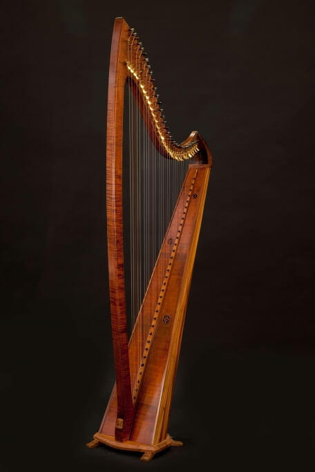 Isabelle de Spoelberch Harpe Dounia
