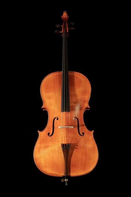 Isabelle de Spoelberch Violoncelle